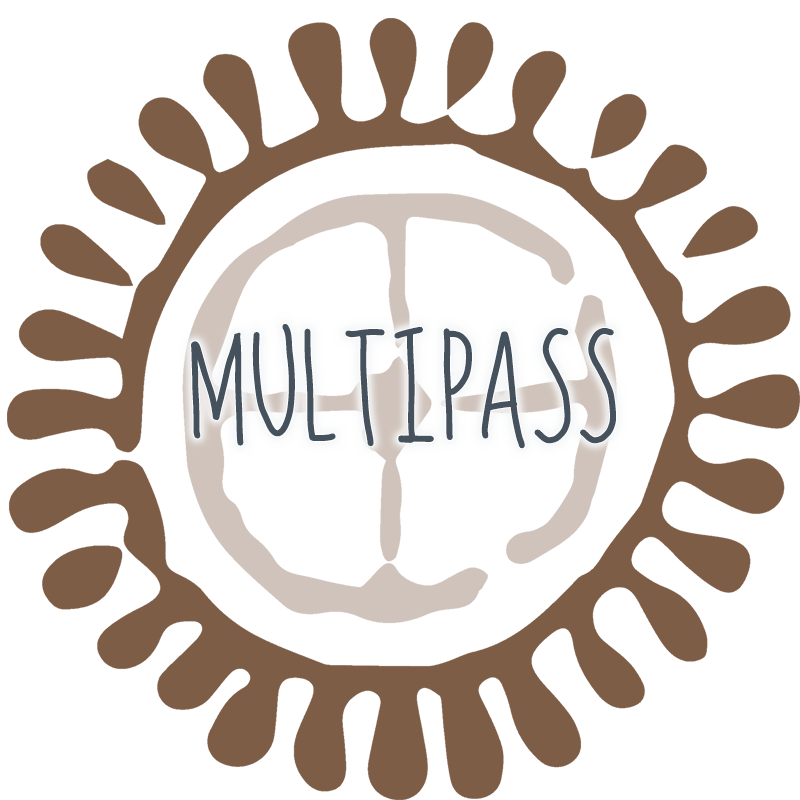 Multipass