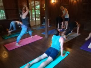 Yoga@Peace Cafe